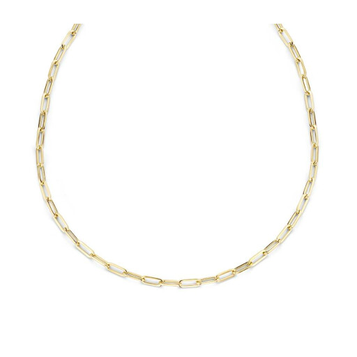 Schaap en Citroen Schakel collier Essentials ovale schakel